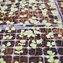 Is Urban Farming The Answer to Food Security?